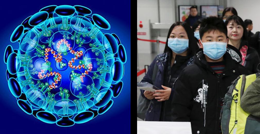 Коронавирус в Китае: умер 361 человек, выздоровели более 480