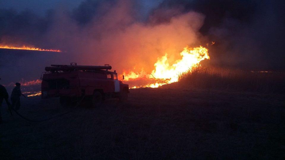 В Черкасской области из-за поджога травы чуть не сгорело село
