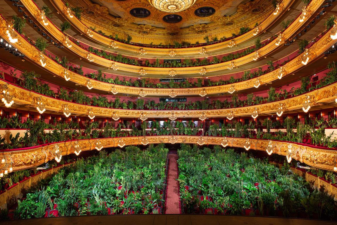 Концерт для зрителей в горшках. Оперный театр в Испании выступил перед т...
