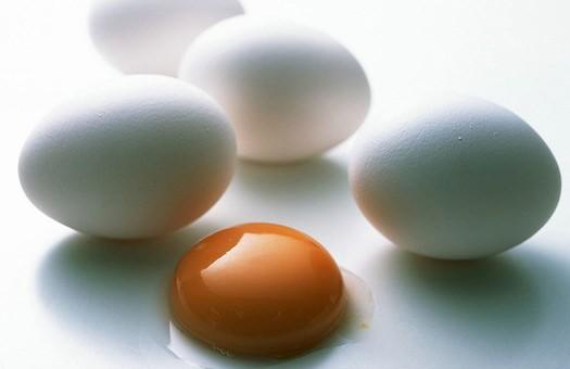 От Авангарда потребовали повысить цены на яйца