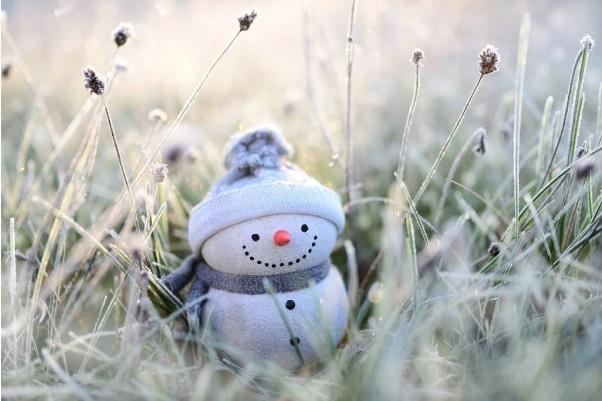 Температура в январе в столице превысила норму на 6 градусов. Теплее был...