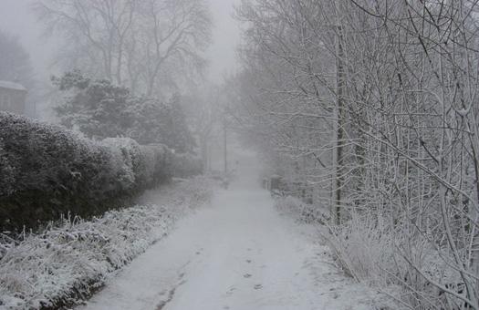 В Китае жертвами снегопадов стали 36 человек