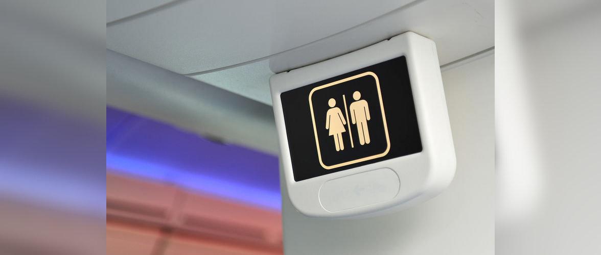 Россиянин из-за туалета избил польского дипломата в самолете
