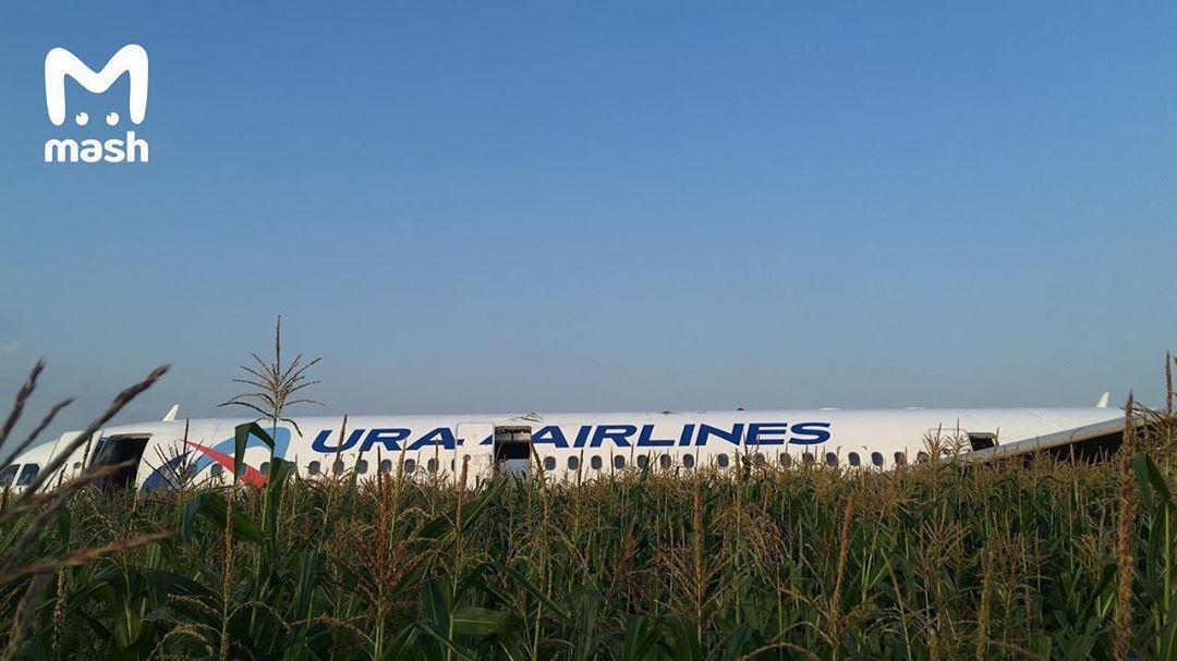 Под Москвой пассажирский самолет, летевший в Крым, совершил жесткую поса...