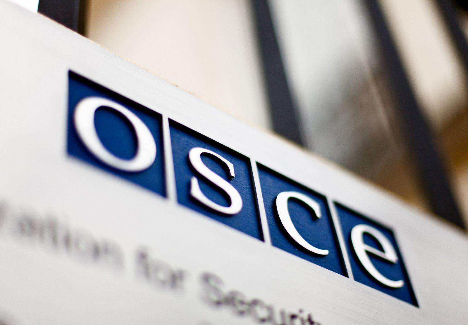 """В ОБСЕ обеспокоены обысками у """"Общественного"""""""