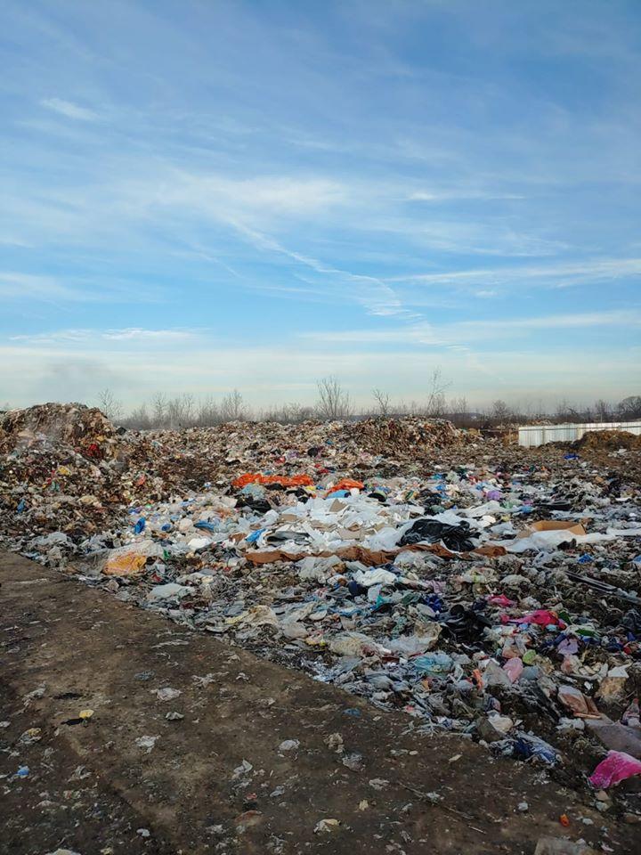 свалка в дрогобыче, фото, мусор