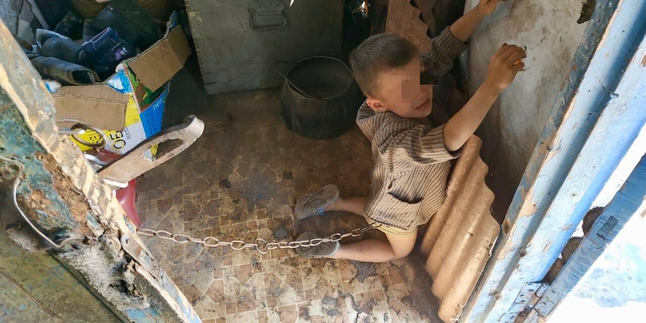 Аброськин рассказал о посаженом на цепь 6-летнем ребенке в Луганской обл...