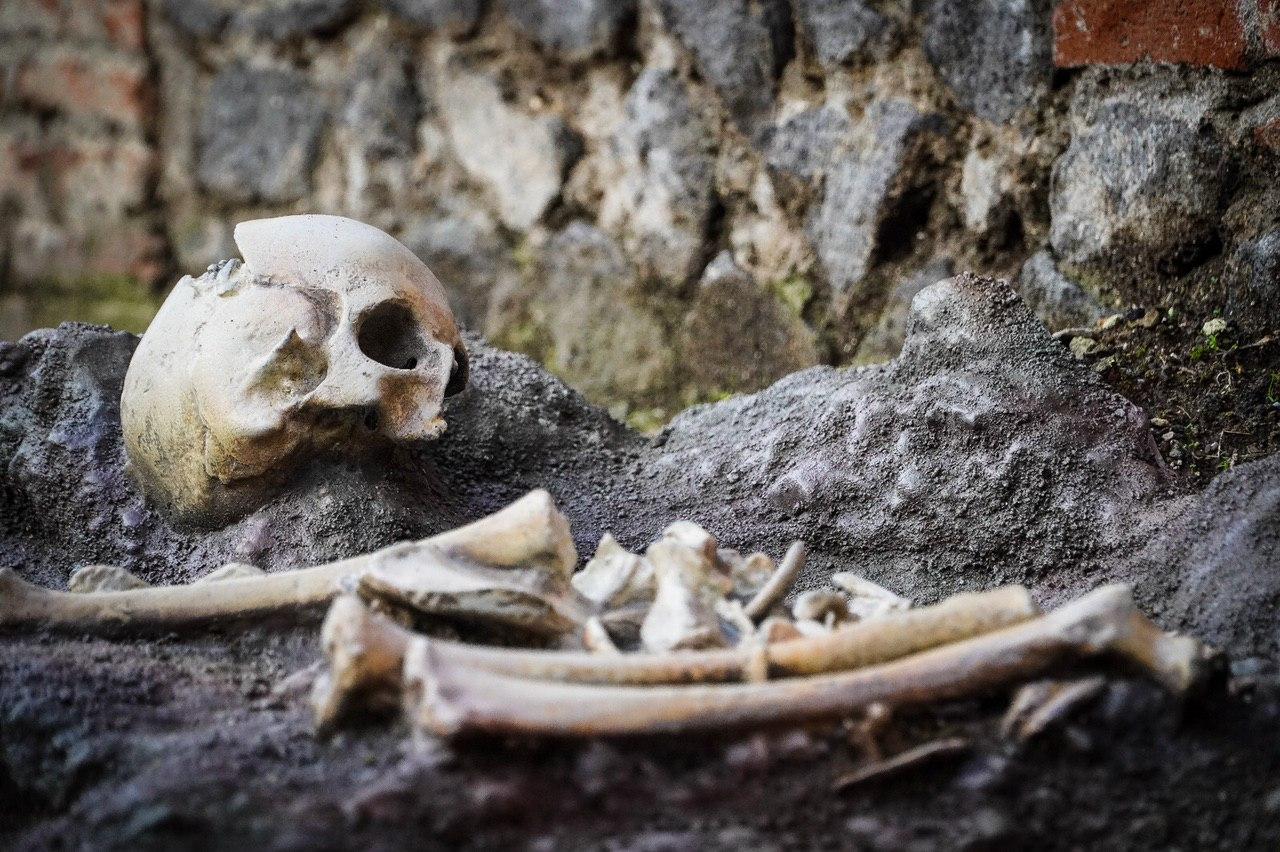 скелет, помпеи, ребенок, везувий, извержение