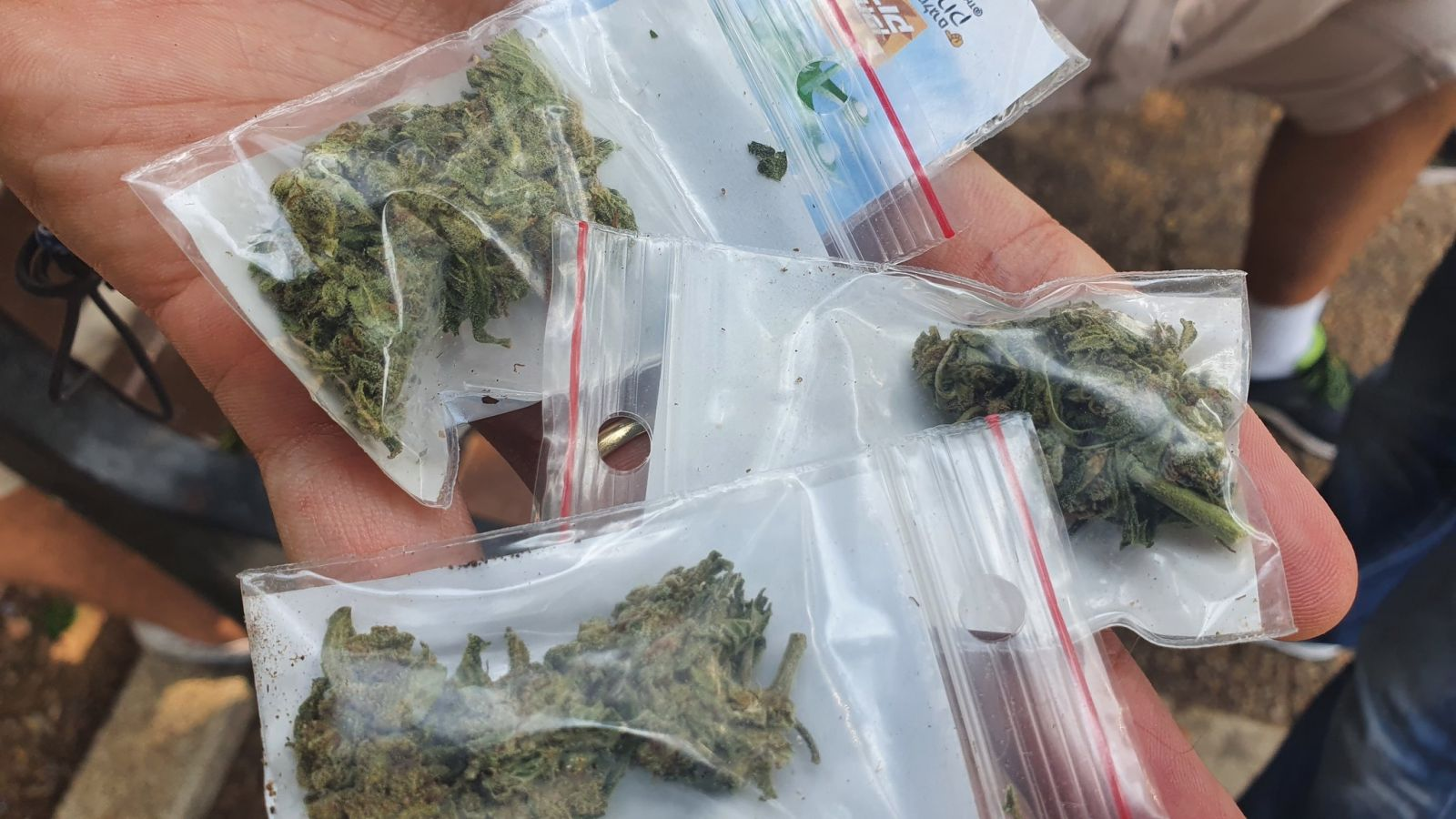 В Тель-Авиве с дрона сбросили сотни пакетиков с марихуаной