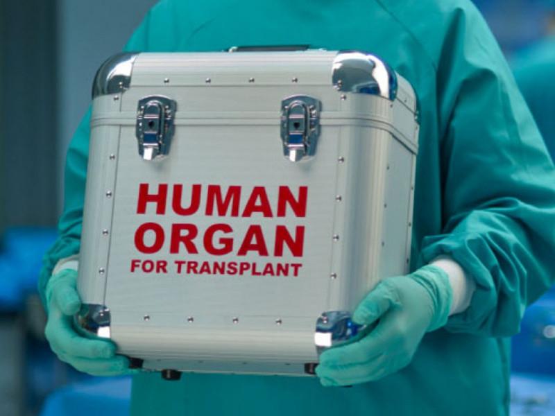 В Украине впервые провели трансплантацию поджелудочной железы