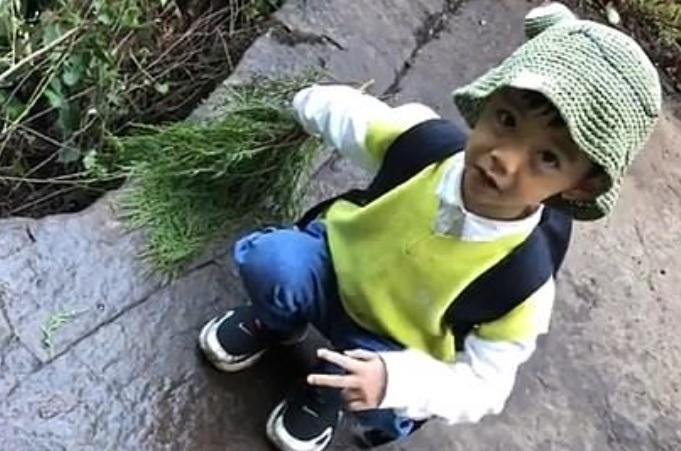 В Китае 5-летний мальчик гулял по деревне и обнаружил следы динозавров