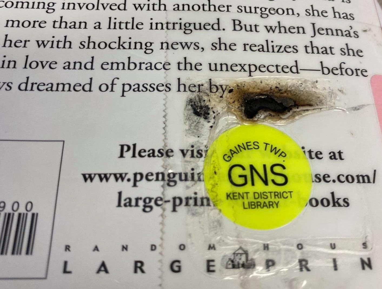 Библиотеки в США просят не жарить книги в микроволновках из-за COVID-19