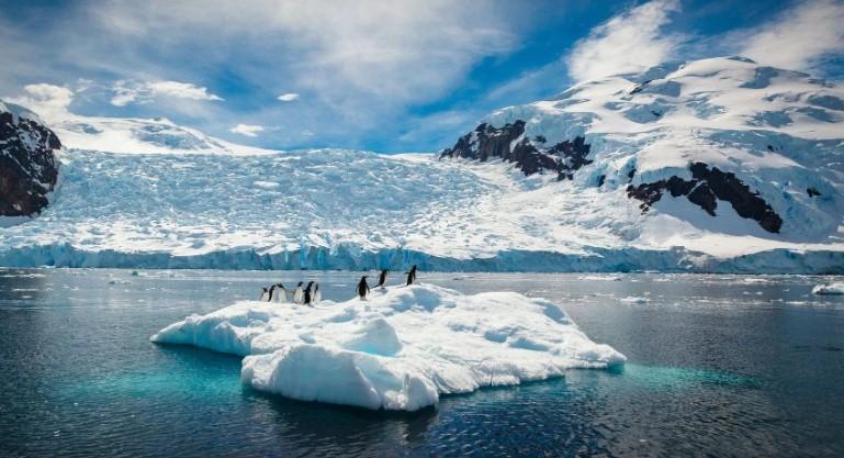 В Антарктике зафиксировали рекордные 20,7 градусов тепла
