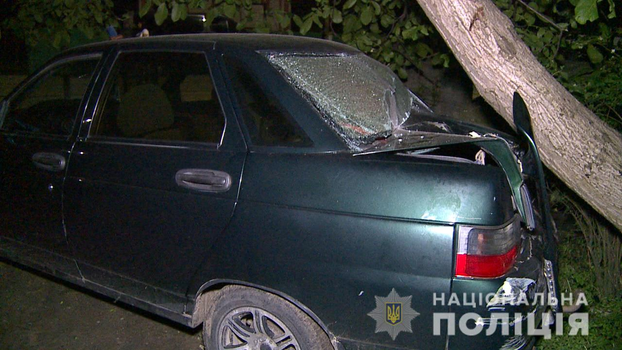 В селе возле Винницы пьяная женщина сбила четырех детей