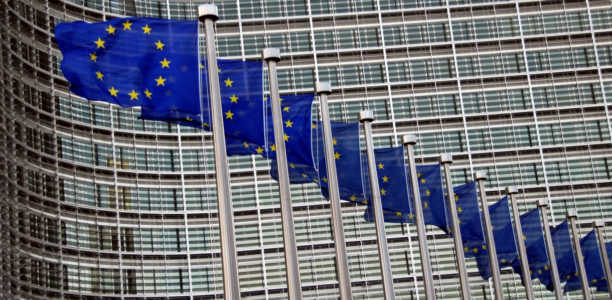 Европейская комиссия изучит и даст свою оценку языковому закону