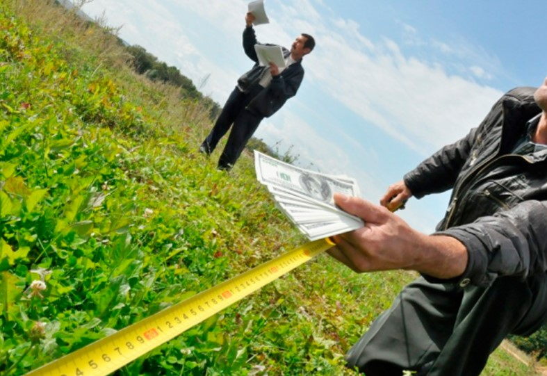 Немецкие аграрии в письме объяснили Зеленскому, что не так с открытием рынка земли