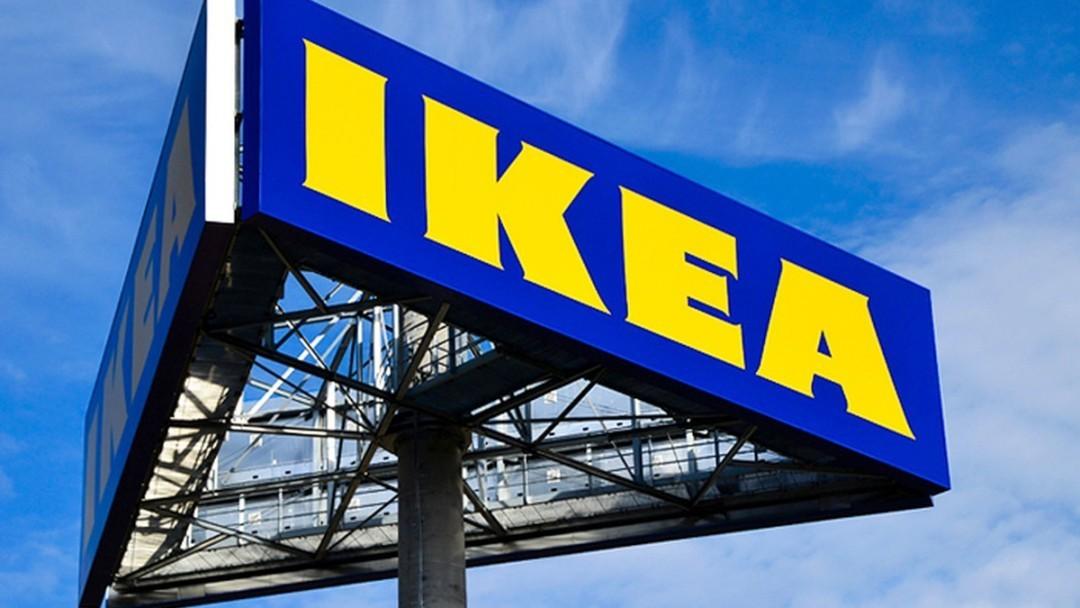 Карпатская древесина для IKEA: Гослесагентство проверит расследование