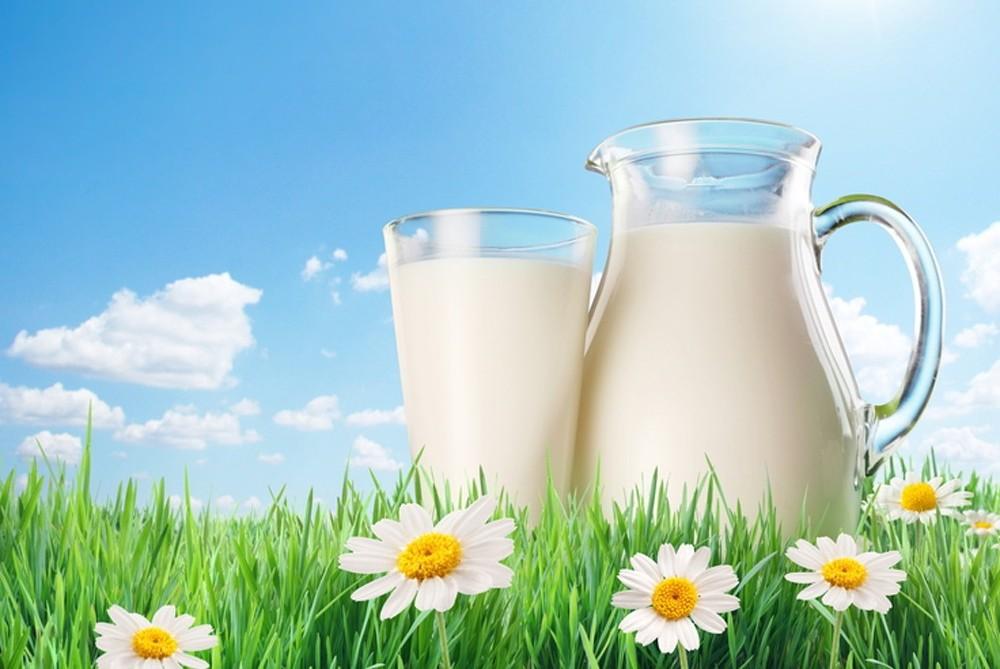 В декабре в Украине подорожали молоко и сливочное масло