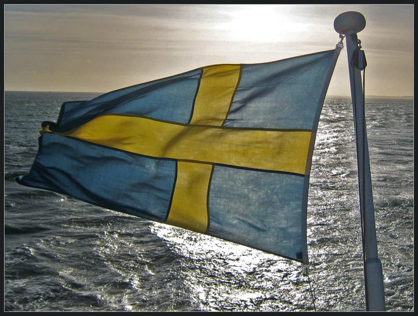 Вооруженные силы Швеции впервые подготовят кибербойцов