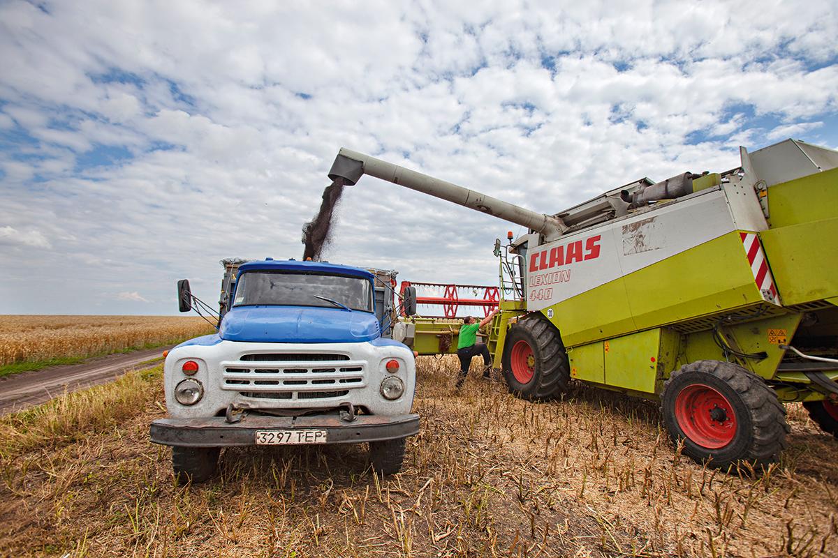 Незамеченный рекорд. Почему максимальный урожай в Украине не приведет к...