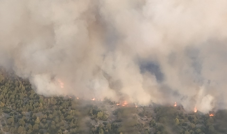 На территории военного полигона в Черниговской области горит лес, привле...