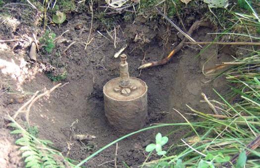 Шотландские ученые разработали способ обнаружения мин при помощи бактери...