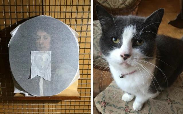 В Великобритании кошка разодрала картину стоимостью в пять тысяч фунтов...