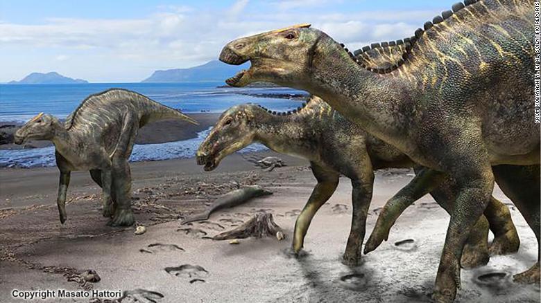 В Японии был найден новый вид динозавров