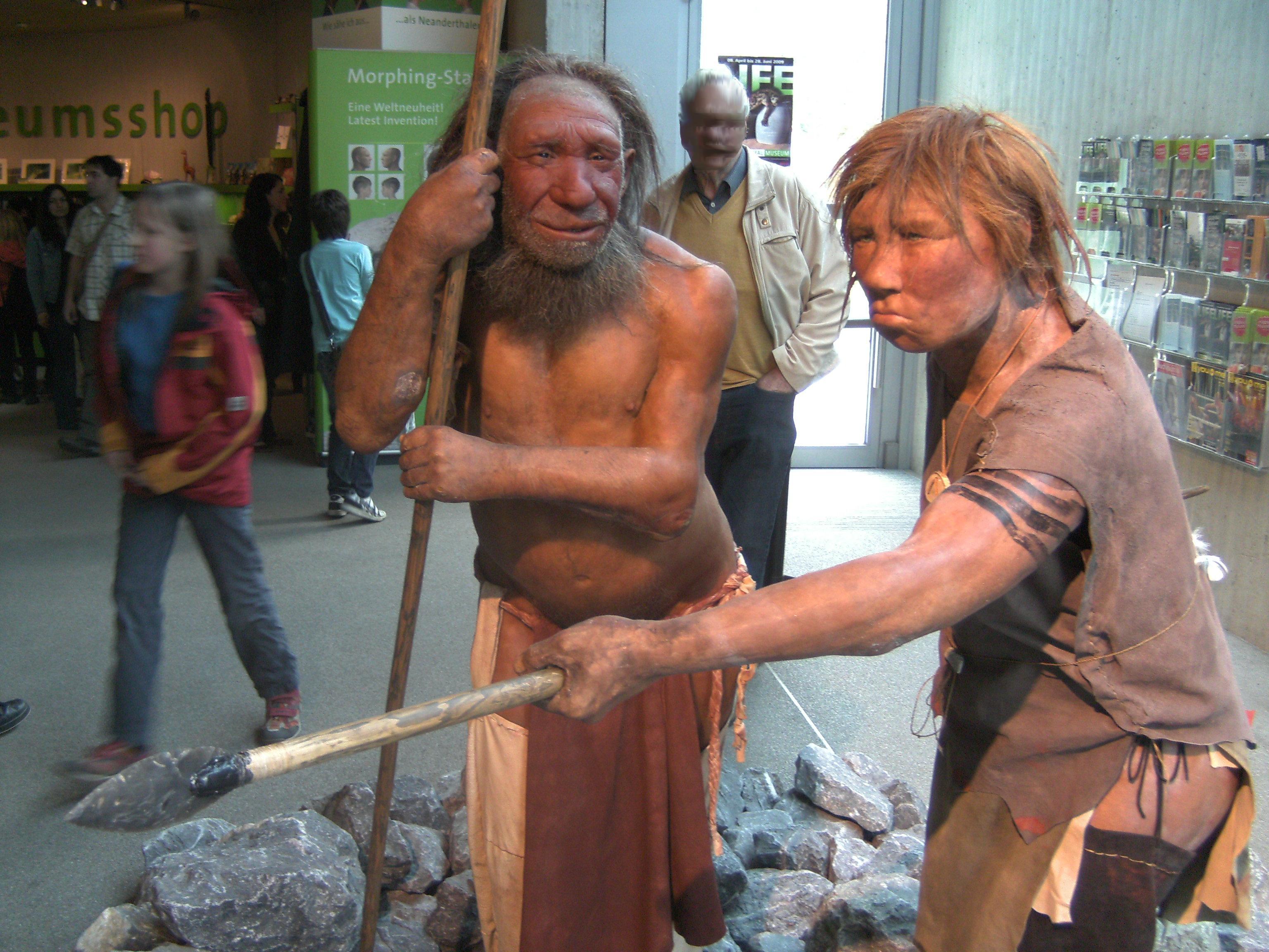 Неандертальцы оказались продвинутыми охотниками