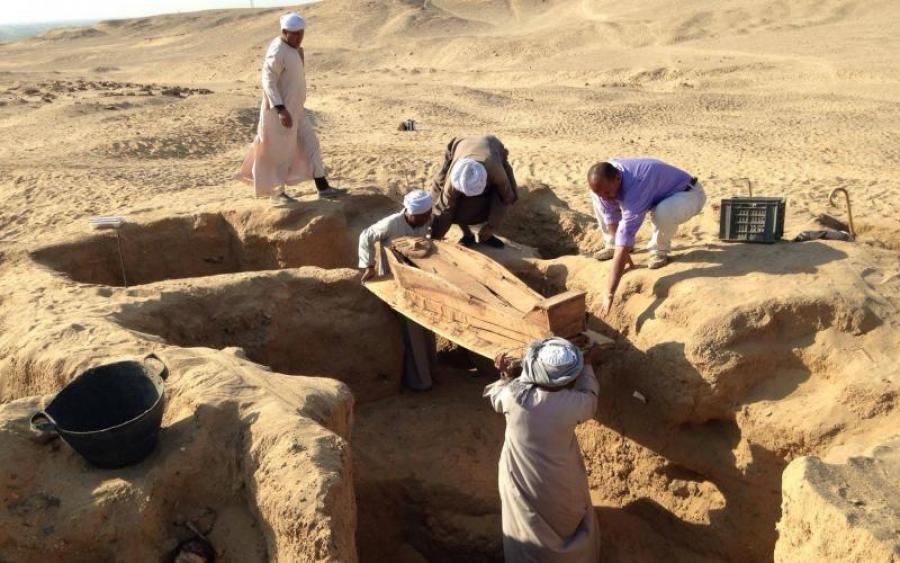 В Египте нашли восемь миллионов мумий собак, шакалов и мангустов