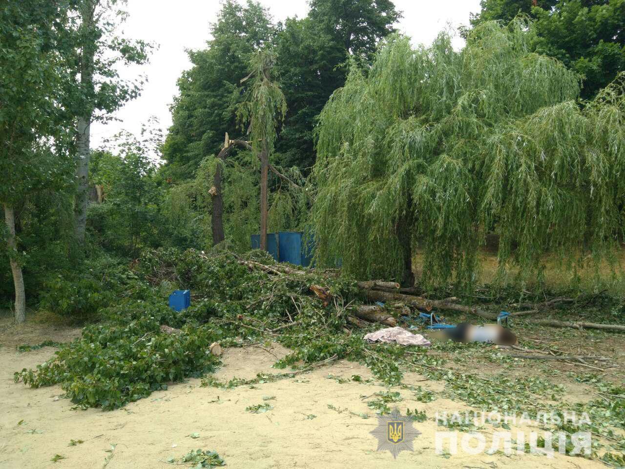 В Харьковской области на базе отдыха людей привалило деревом, есть жертв...