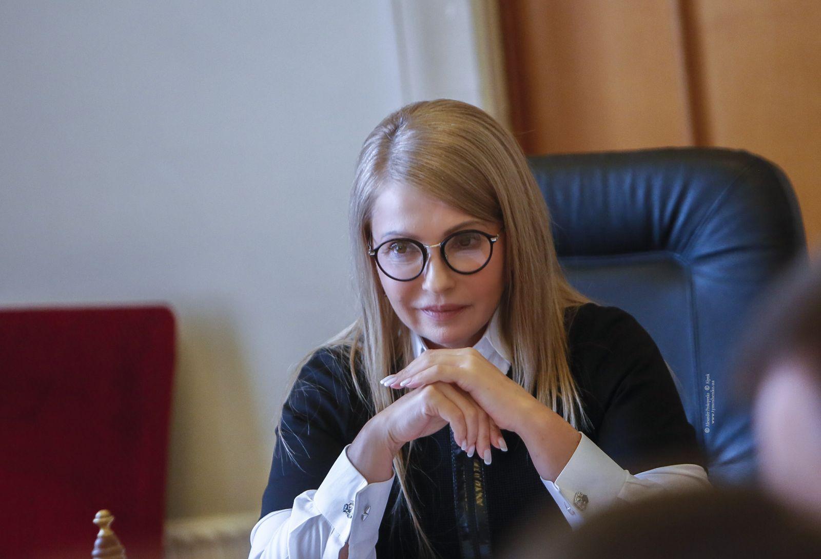 """""""Батькивщина"""" требует вынести на референдум вопрос запуска рынка земли"""