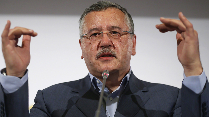 Березенко подал иск к кандидату в президенты Гриценко о защите чести и д...