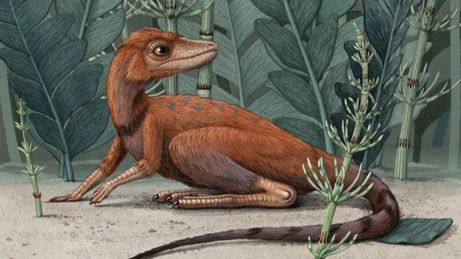 Гроза мух и жуков. Ученые нашли крошечного предка динозавров