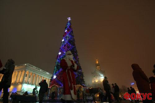 Елку на Майдане в этом году украсят тиграми
