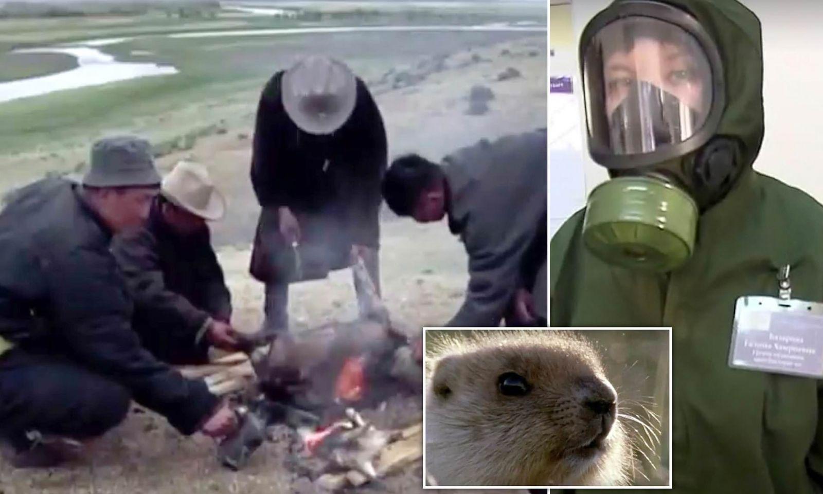 Сурков не есть! В Монголии скончалась уже третья жертва бубонной чумы