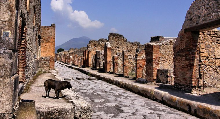 В Италии задержали британку, пытавшуюся срезать древнюю мозаику в Помпея...