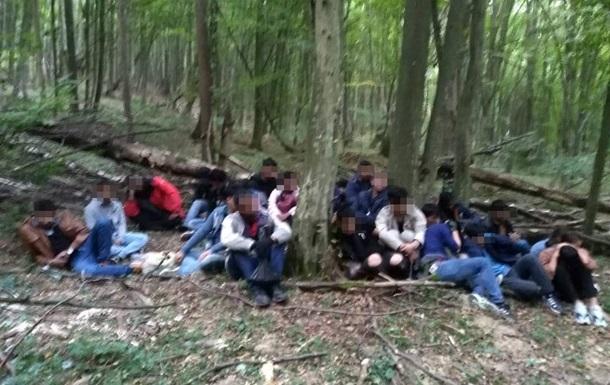 В Закарпатской области пограничники со стрельбой задержали 24 нелегала