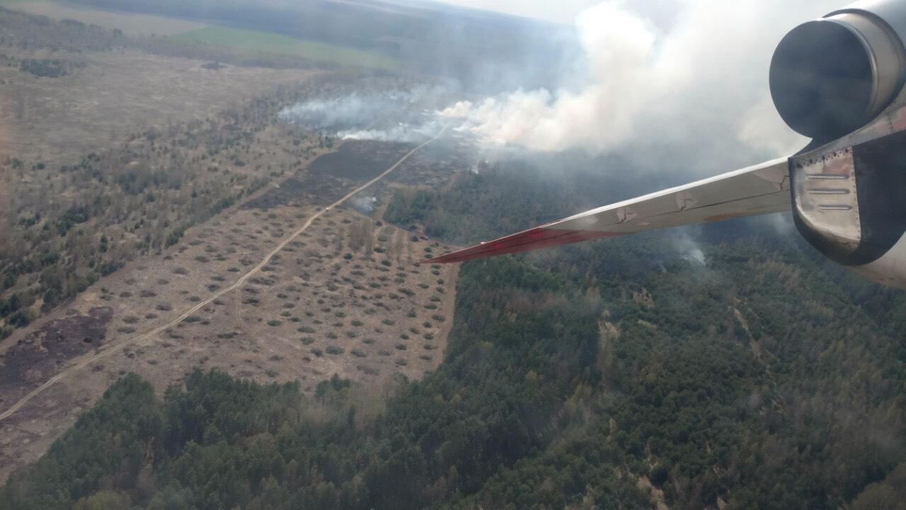Масштабный пожар под Черниговом тушили с помощью авиации