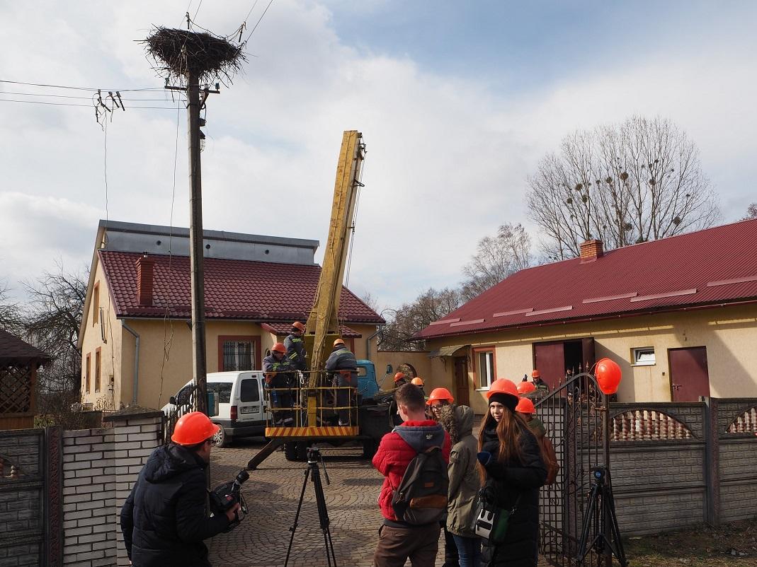 На Львовщине облэнерго модернизирует электроопоры к прилету аистов