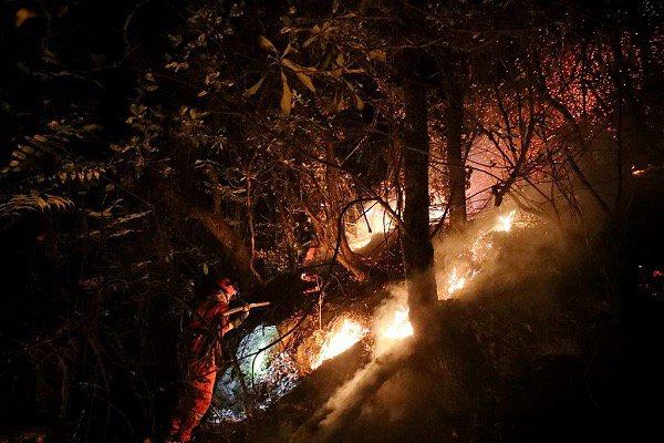 В Китае во время тушения пожара погибли 26 пожарных