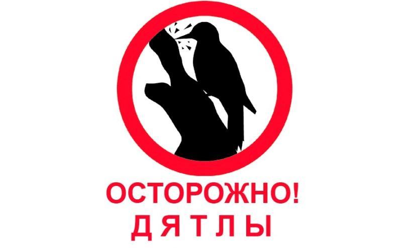 Оккупанты платят крымчанам за доносы, – адвокат