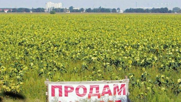 Арахамия сомневается, что закон о рынке земли примут до конца года