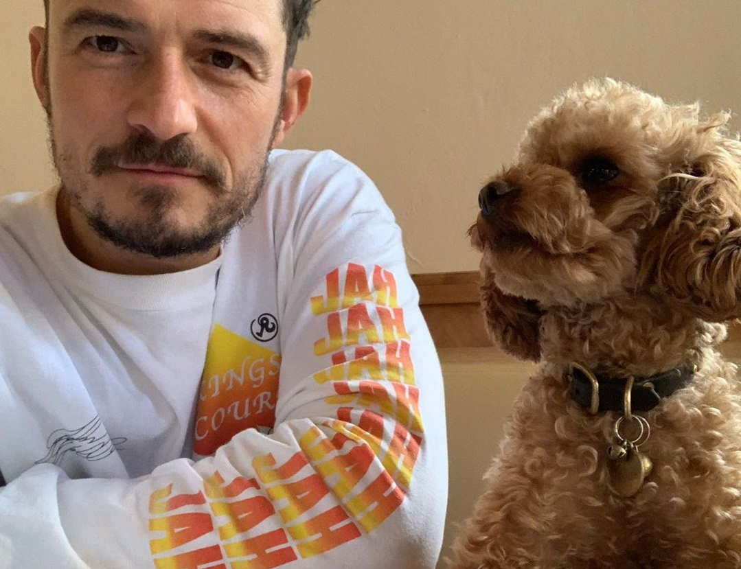 Орландо Блум сделал татуировку в честь своего погибшего пса