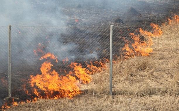 По всей Украине объявлен наивысший уровень пожарной опасности