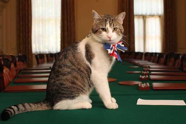 С приходом Джонсона в резиденции премьера Британии может поселиться соба...