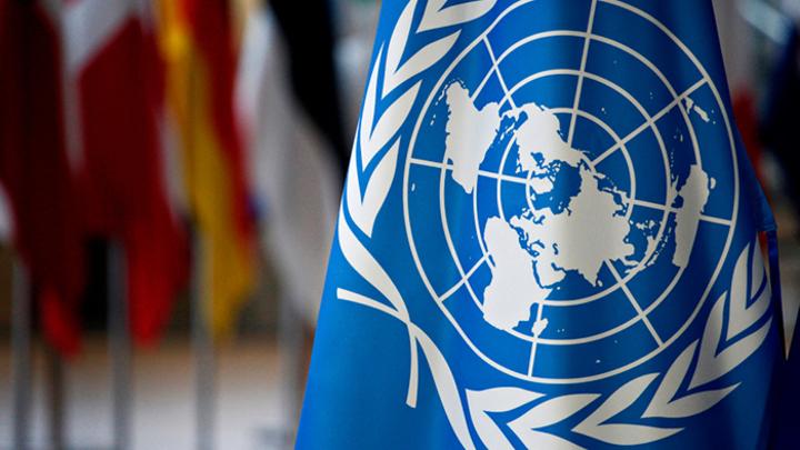 Дамаск требует срочного созыва Совбеза ООН