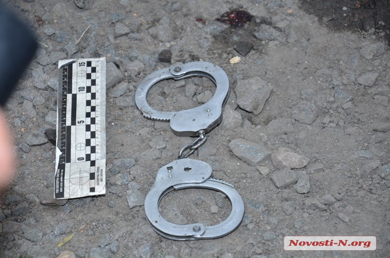 Луценко: Причастных к избиению и гибели задержанного полицейских отдадут...