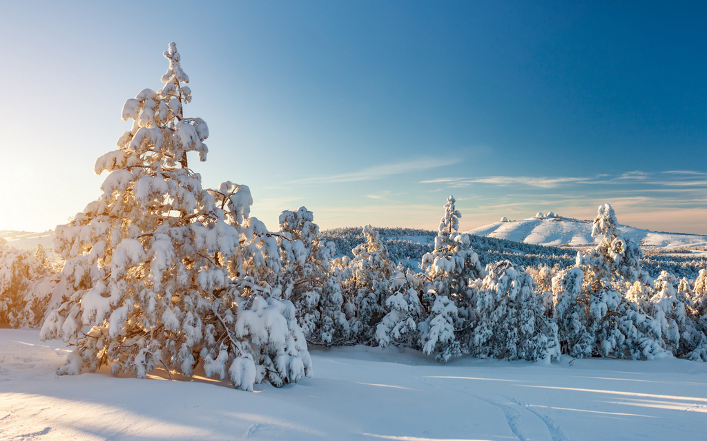 Прощай, зима! Пять самых необычных природных явлений в мороз