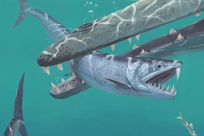 В океанах доисторической Земли водились огромные саблезубые анчоусы